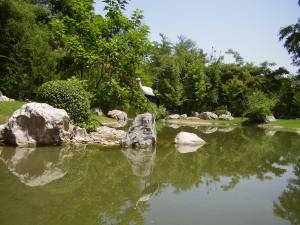 Японский сад в Ташкенте - аист, фотообои