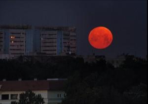 Луна в Ташкенте
