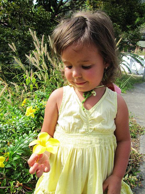 Желтый цветочек