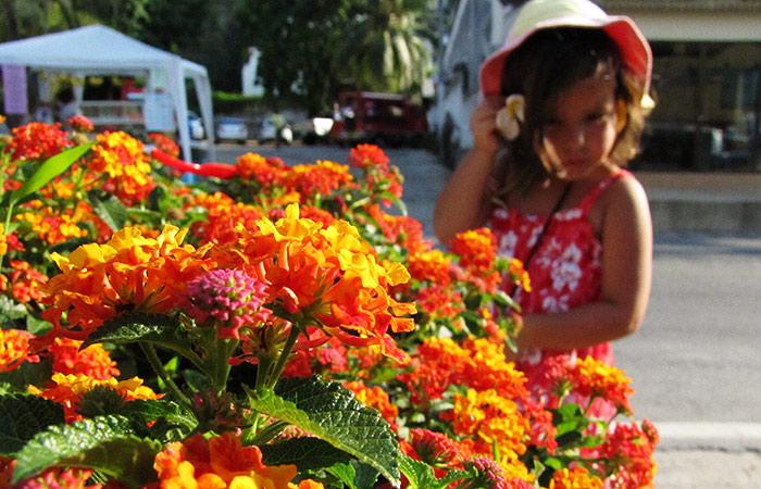 Соня и цветы