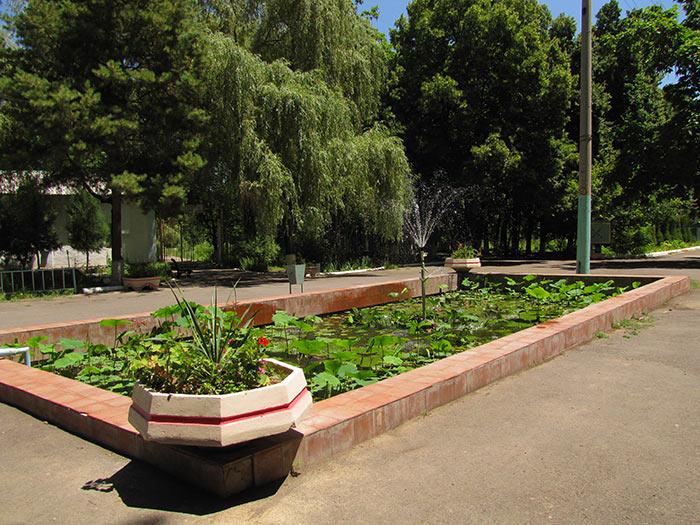 Кругосветка по Ботаническому саду