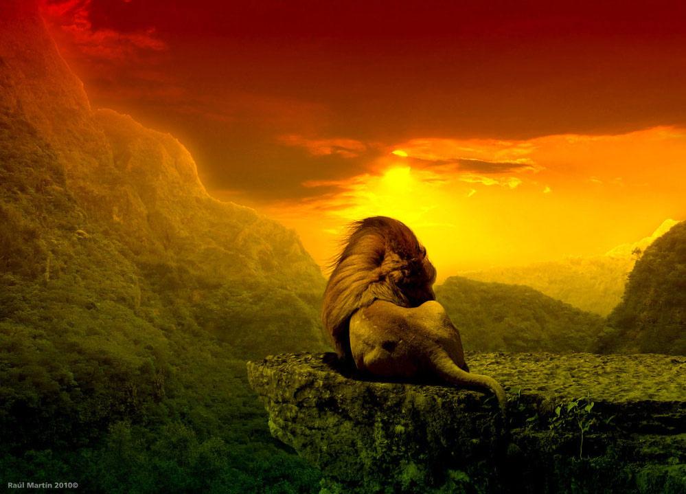 Лев растаман